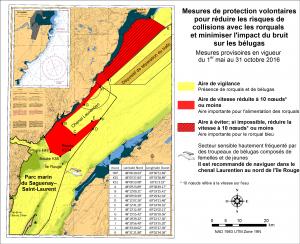 Mesures de protection volontaires pour réduire les risques de collisions avec les rorquals et minimiser l'impact du bruit sur les bélugas